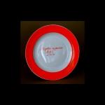 Первая тарелка ПФЗ из фондов Прокопьевского краеведческого музея. 1973. Источник: ok.ru