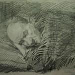 """11. Кизевальтер Вера """"Сладкий сон после обеда. Портрет В.С.Тоота"""" 1957 Бумага, карандаш 28х20,5 Собрание семьи художника"""