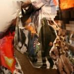 """Дмитрий Окружнов, Мария Шарова """"Из серии """"В окружении действительности"""" 2015"""