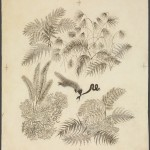 """Валентин Курдов """"Бой мангуста со змеей. Иллюстрация к сказке Р.Киплинга «Рикки-Тикки-Тави» 1934"""