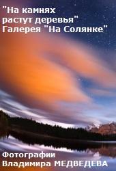 На камнях растут деревья. Фотовыставка Владимира Медведева в Галерее на Солянке