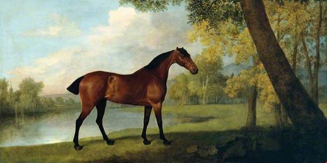 25 августа 1724 года родился Джордж Стаббс.