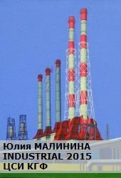 Юлия Малинина. Industrial 2015. ЦСИ КГФ.