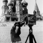 «Москва глазами Мики» из проекта «Экологическое соавторство» 1998