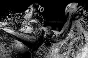 Выставка победителей фотоконкурса имени Андрея Стенина.