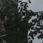 Пётр Жуков «The Same» 2015-2016