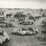 """Георгий Петрусов """"Обед в поле"""" 1934"""