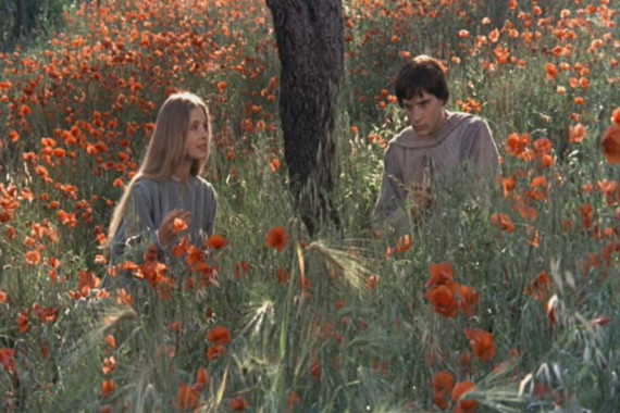 «Брат Солнце, сестра Луна» 1972. Режиссер Франко Дзеффирелли.