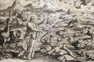 Образы воды в христианском искусстве. Памятники XV - начала XX века.