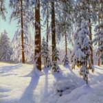 """Иван Шультце """"Свечение снега"""""""