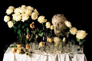 Наташа Никулина. Memento mori. Фотография в жанре натюрморта.