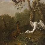 """Иоганн Фридрих Гроот """"Птицы на болоте"""" 1759"""
