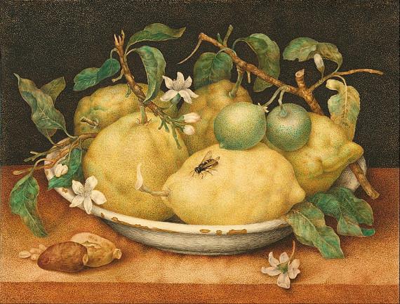 Лекция «Венецианское путешествие. Джованна Гарцони – знаменитый мастер миниатюры».
