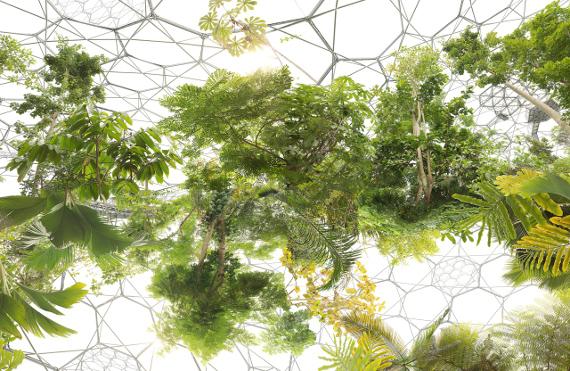 Михаэль Наджар «Космический сад» 2013 © Michael Najjar