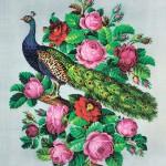 Павлин в розах и камелиях