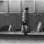 """Владимир Богданов """"Китайская шубка"""" Москва, 1993"""