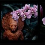 """Александра-Загряжская """"Будда и орхидея"""""""