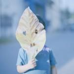 Совместный проект с Фотографическим обществом Японии при поддержке Японского фонда.