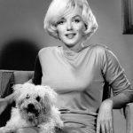 Мэрилин Монро и Маф, 1961