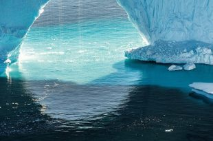 Лекция Ирины Толкачевой «Арктика и Антарктика в истории фотографии».
