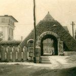 Любляна, Римская стена в Любляне