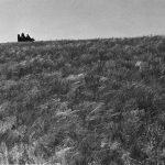"""Михаил Прехнер """"В степи. Для книги """"Первая конная"""" 1935"""
