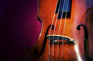 Концерт «Вечер с Контрабасом». В цикле «Музыка на балконе».