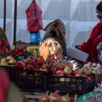 Проект Фотоклуба М-35. Тема яблока как многозначного символа в разных культурах.