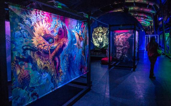 Иммерсивная выставка американского художника Андроида Джонса «Самскара» продлена до конца марта.