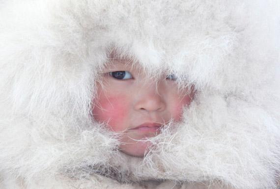 Арктика: круги жизни. Крайний Север Брайана Александера.