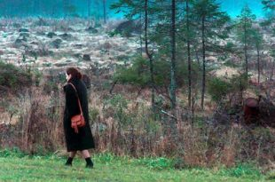 Показ фильма Игоря Поплаухина «Календарь» в рамках акции «Ночь кино».