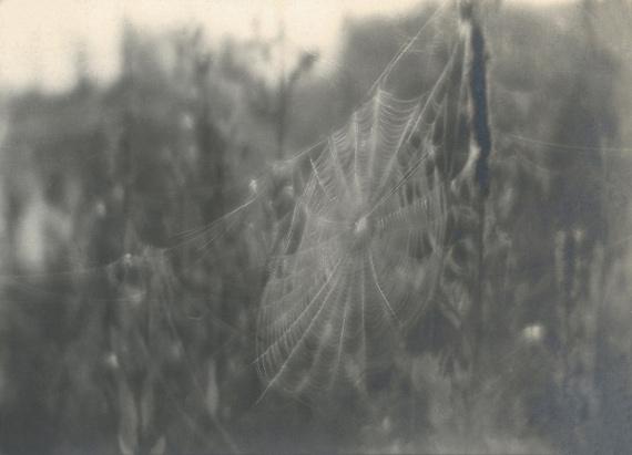 Василий Улитин «Без названия» 1930