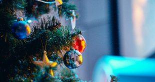 Новогодняя Ёлка в ЦДХ. Необыкновенные приключения Деда Мороза и Снегурочки в интернете!