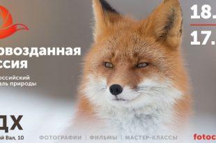 VI Общероссийский фестиваль природы «Первозданная Россия».