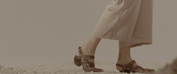 "Выставка ""Саша Пирогова. Сад"". Галерея Фрагмент / Fragment Gallery в Арт-пространстве Cube.Moscow."