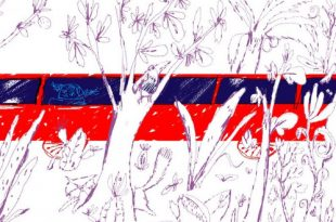 Как растут стихи. Современная детская поэзия: Григорий Кружков и Настя Орлова.