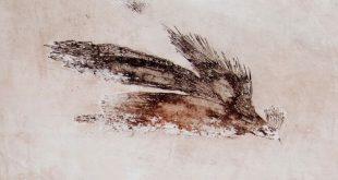 На вешалке крылья не мять. Персональная выставка Юрия Кононенко.