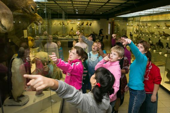 """Инклюзивный фестиваль """"#ЛюдиКакЛюди"""" в Государственном Дарвиновском музее."""