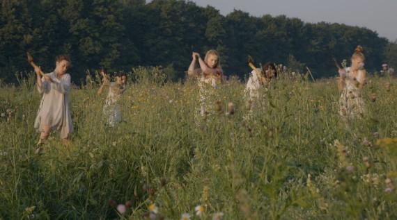 Группа Рой «Сорные травы»