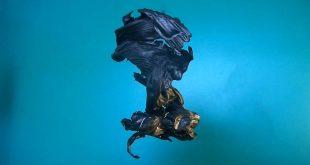 Андрей Ерофеев о выставке Ильи Трушевского «Горящие рисунки» в Галерее JART.