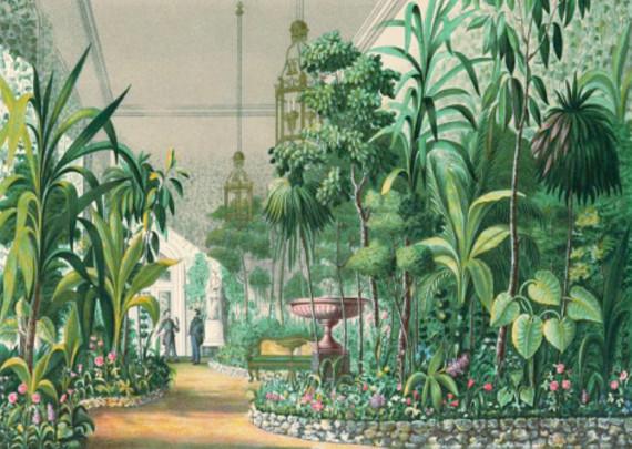"""Выставка """"Мой чудный сад"""". Музей-заповедник """"Люблино"""" - Выставочный зал Театральной школы."""