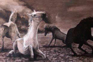 Тимур Шаймухаметов. Ребятам о зверятах.