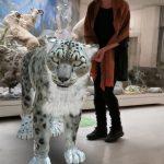 Виртуальный ирбис встретит посетителей выставки