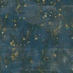 """Александра Паперно """"Заяц. Из серии """"Карты звездного неба"""" 2003"""