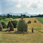 """Рена Эффенди """"Вся семья Борка из деревни Бреб наносят последний штрих на один из 40 стогов сена, которые каждое лето укладывают в Марамуреше, Румыния"""""""
