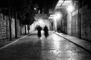Дмитрий Брикман. Тени Иерусалима.
