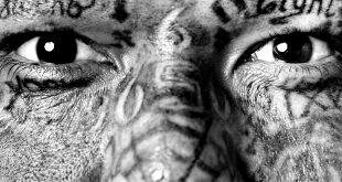 """Выставка """"Тату"""". ГМИИ имени А.С. Пушкина – Галерея искусства стран Европы и Америки XIX–ХХ веков."""