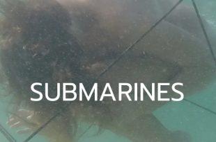 Выставочный онлайн-проект «SUBMARINES» Галереи «Парк».