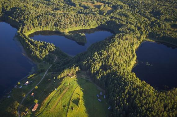 Масельга. Сердце Кенозерского национального парка. Фото В. Штрика. Предоставлено: Государственный Дарвиновский музей.