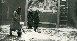 Истории хранителей Пушкинского музея в годы войны станут частью проекта «Лица Победы».